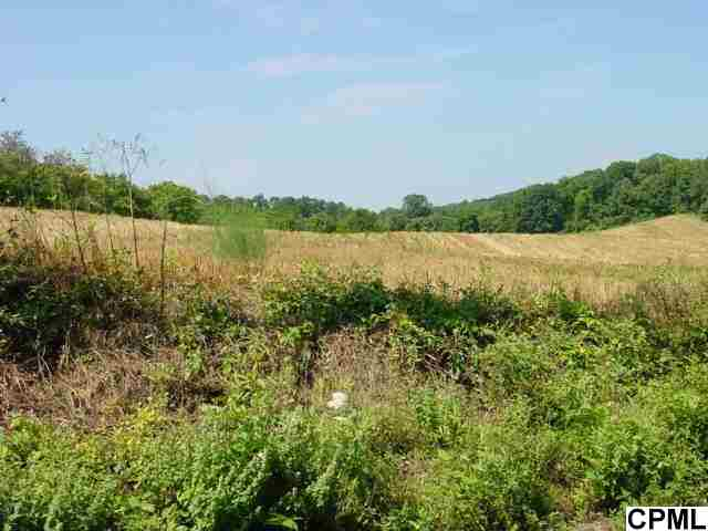 Image of Acreage for Sale near Carlisle, Pennsylvania, in Cumberland county: 112.00 acres