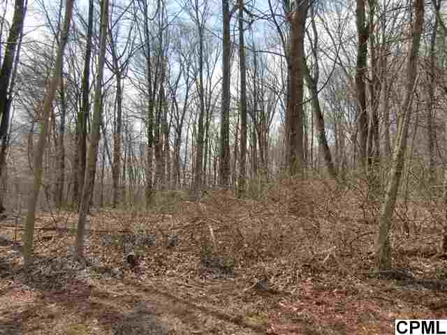 Woodland Cir, Mount Gretna, PA 17064
