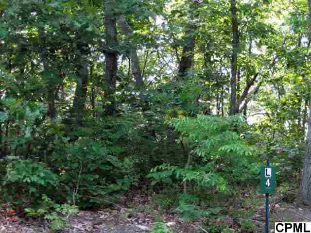 Lower Ridge Rd, James Creek, PA 16657