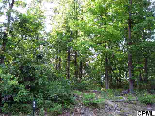 Lower Ridge Rd, Hopewell Township, PA 16657