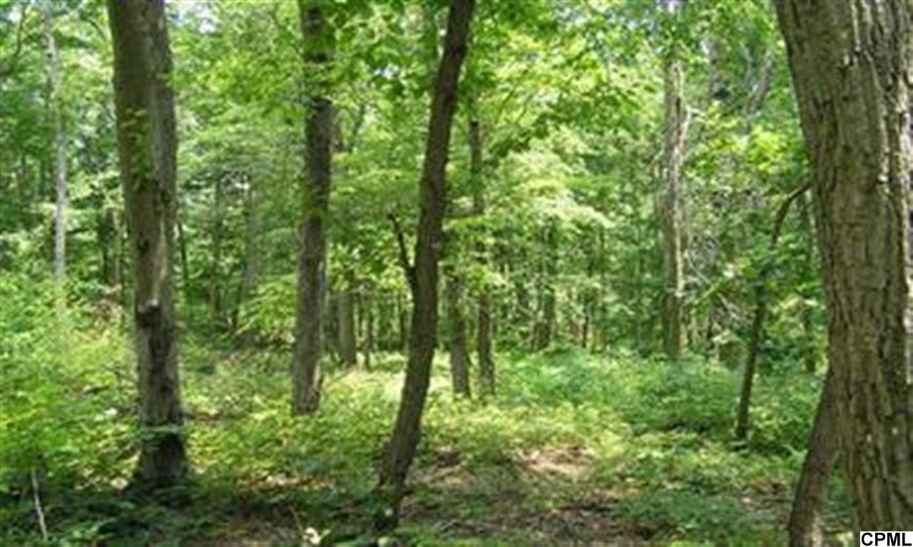 Real Estate for Sale, ListingId: 25314015, Mifflintown,PA17059
