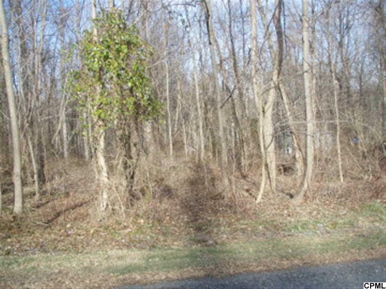 48 Meadow Lark Trl, Fairfield, PA 17320