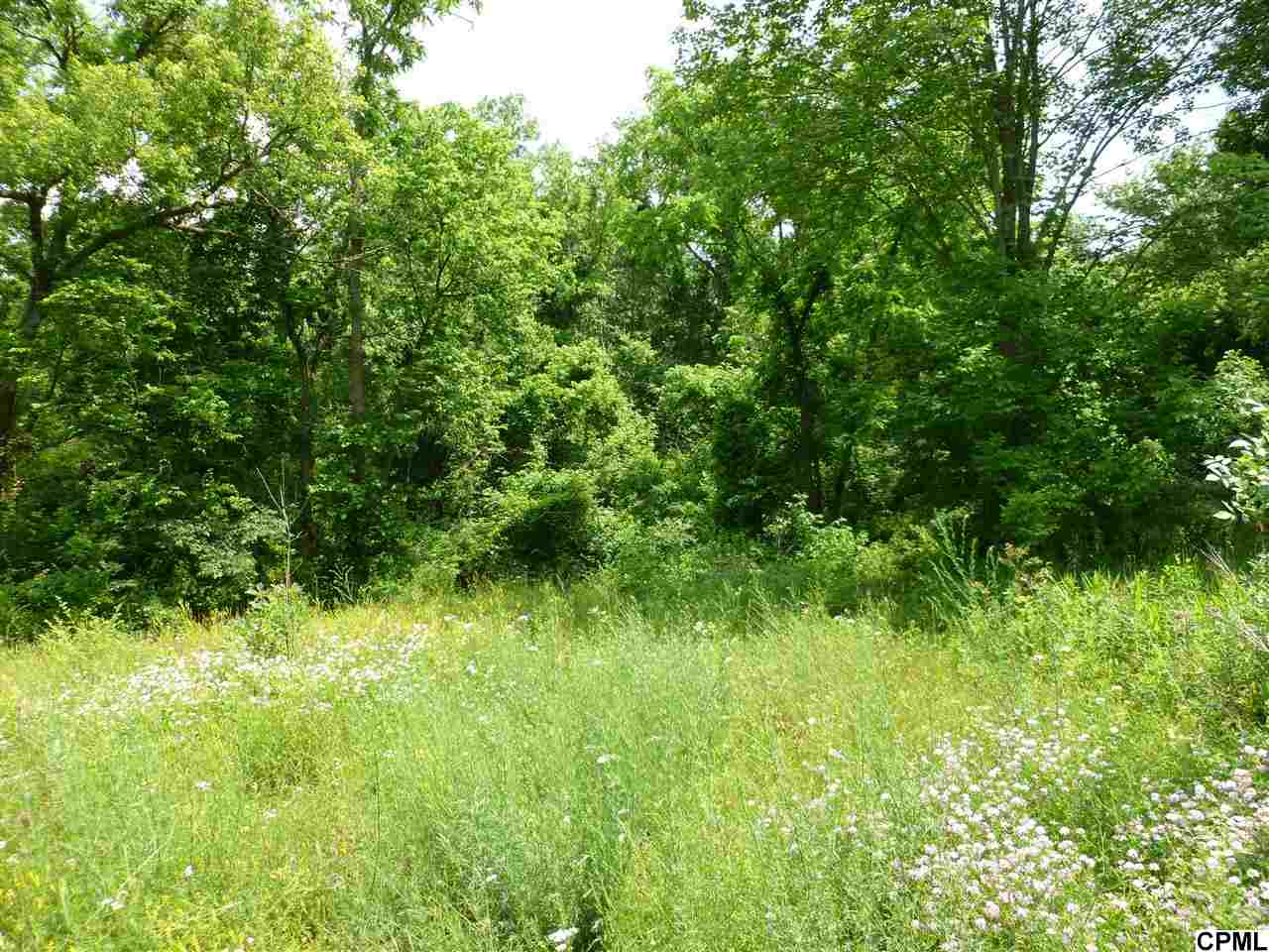 Land for Sale, ListingId:36315043, location: Lots Percy Avenue Chambersburg 17202