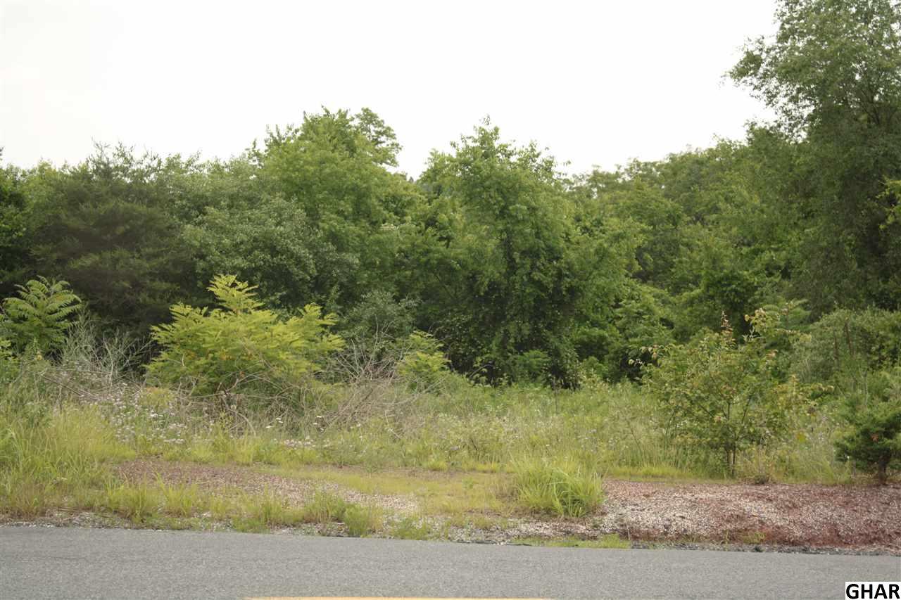 Real Estate for Sale, ListingId: 35271078, Shermans Dale,PA17090