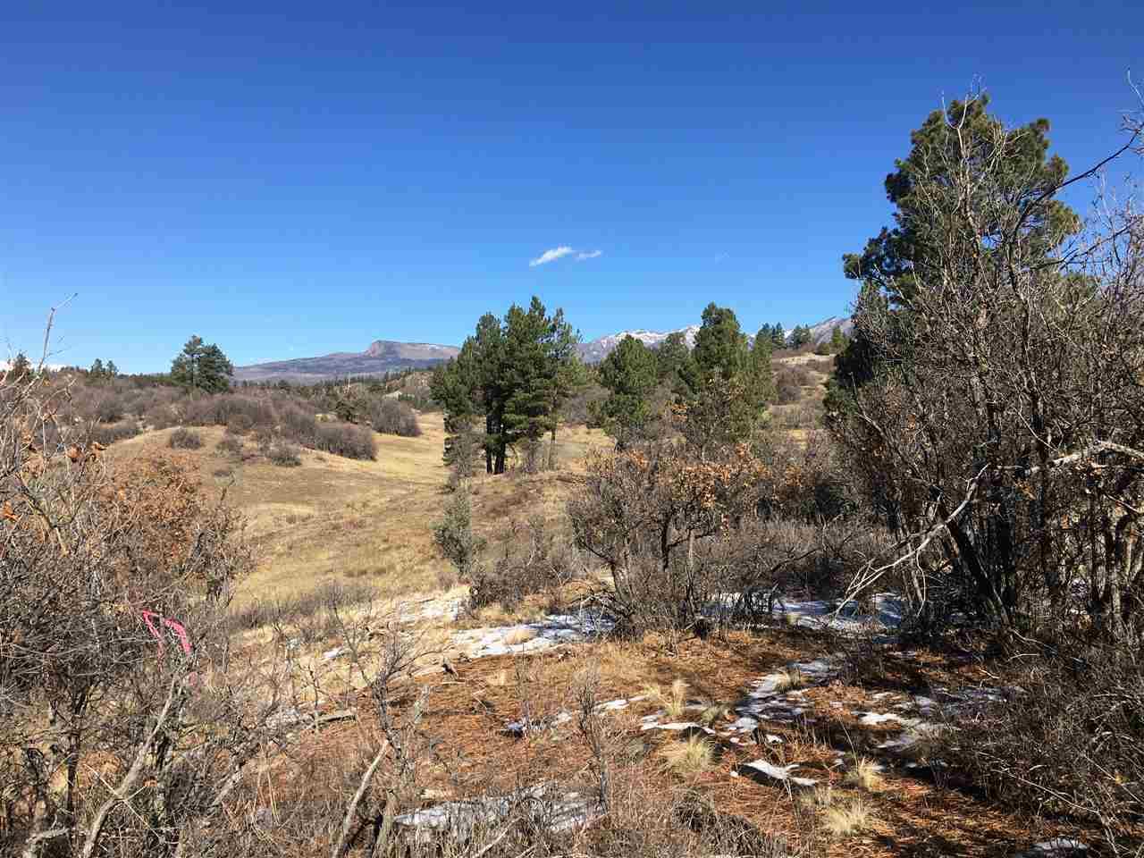 673 Spring Creek Cir Pagosa Springs, CO 81128