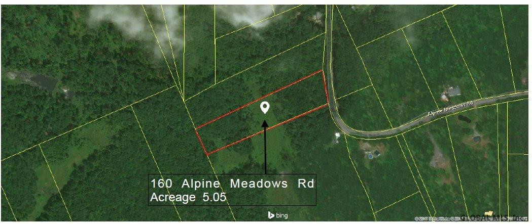 160 ALPINE MEADOWS RD Greenfield, NY 12859