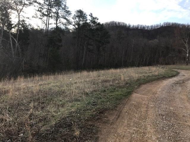 Vista Drive Thorn Hill, TN 37881