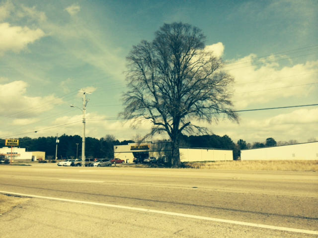 Lots and Land - Tupelo, MS (photo 2)