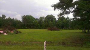 Lots and Land - Mooreville, MS (photo 2)