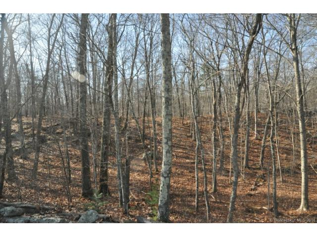 Real Estate for Sale, ListingId: 30879899, Hebron, CT  06248