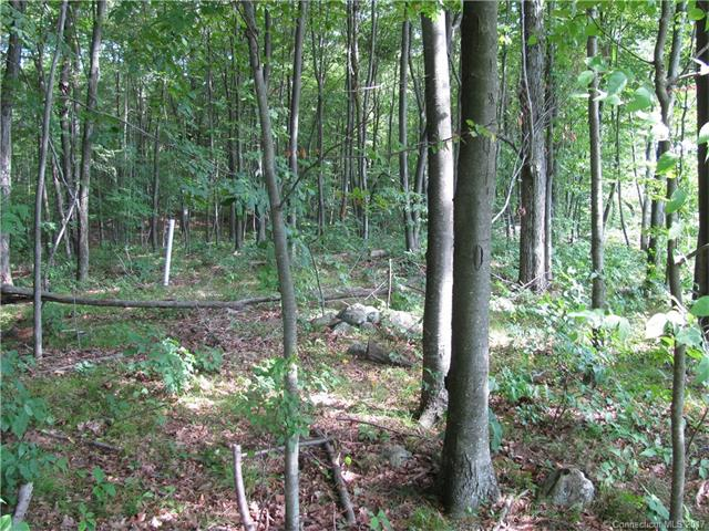 Lots and Vacant Land - Prospect, CT (photo 1)