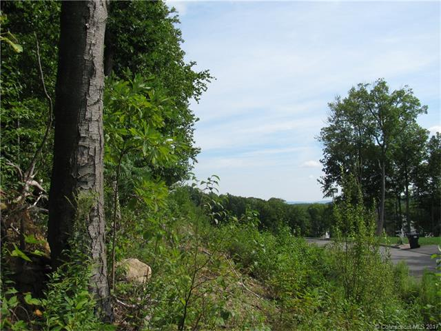 Lots and Vacant Land - Prospect, CT (photo 2)
