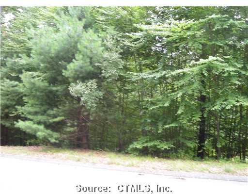 primary photo for 60 OLD DANIELS LANE, Amston, CT 06231, US