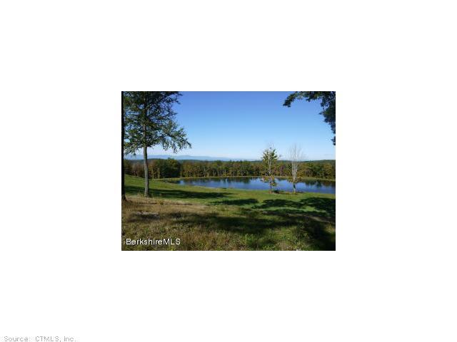 Real Estate for Sale, ListingId: 29609951, Hillsdale,NY12529