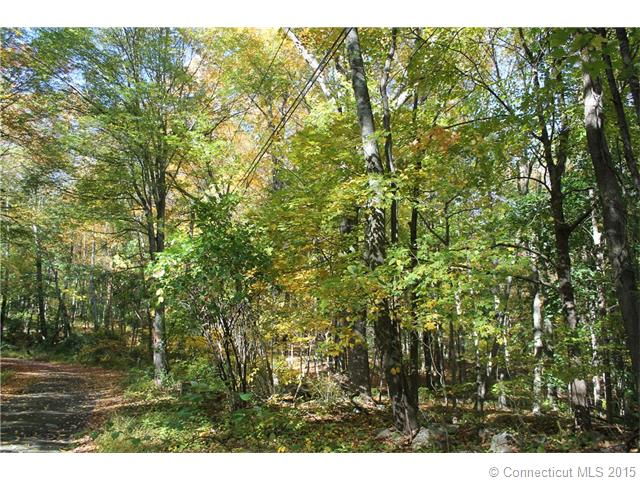 Real Estate for Sale, ListingId: 35958103, Woodbridge,CT06525