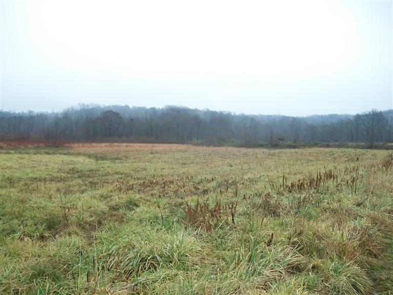 60 acres in Corbin, Kentucky