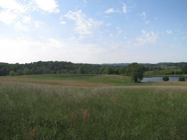 100 acres East Bernstadt, KY