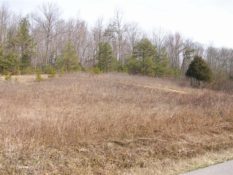 52.9 acres in Whitley City, Kentucky