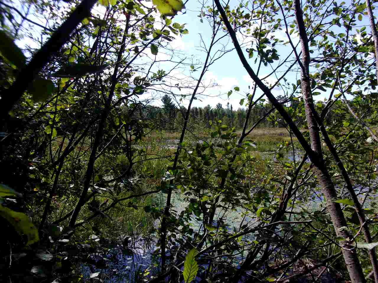 primary photo for Lot 9 UNNAMED ROAD, Medford, WI 54451, US