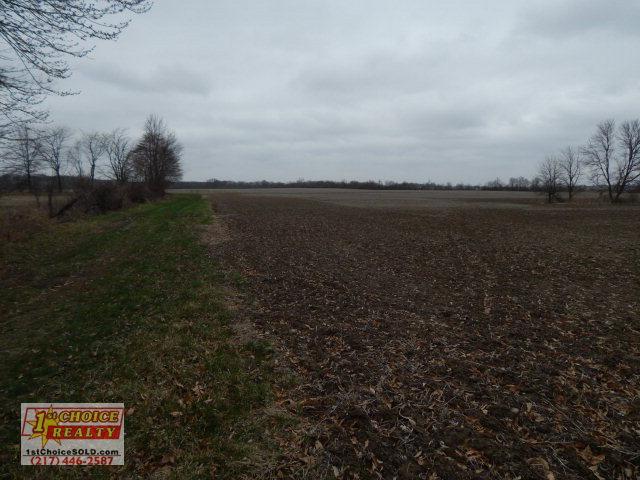 97 acres Alvin, IL