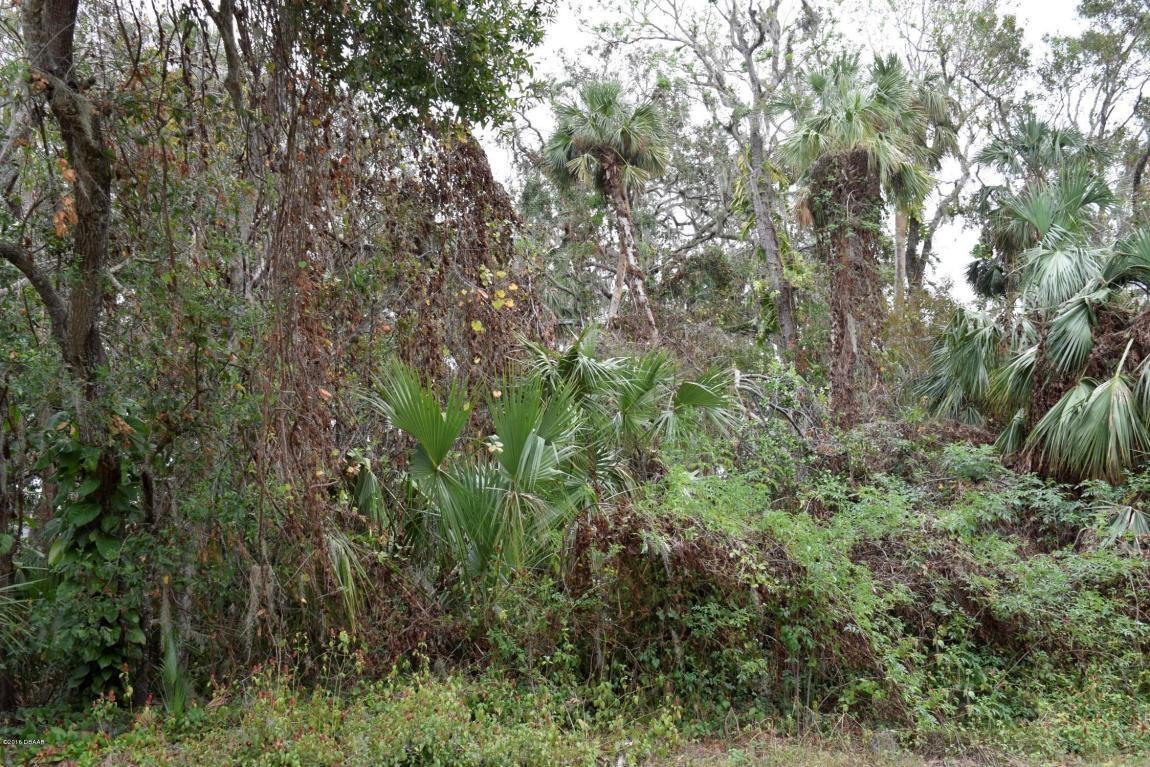 0 PINE TREE Drive Edgewater, FL 32141