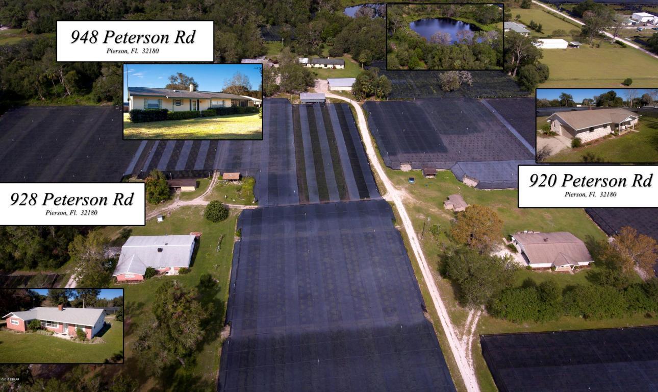 Photo of 920 Peterson Road  Pierson  FL
