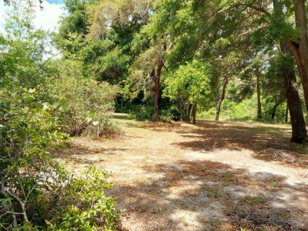 xxxx oak Woods Way Lady Lake, FL 32159
