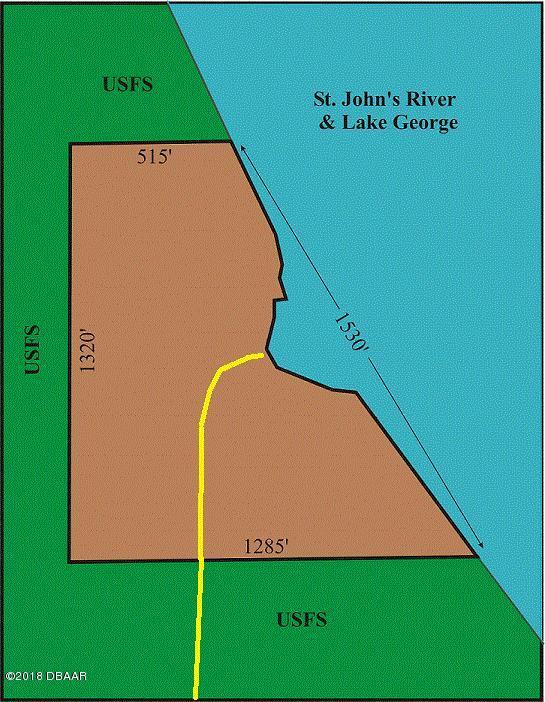 29551 North East 149th Street Road Salt Springs, FL 32134