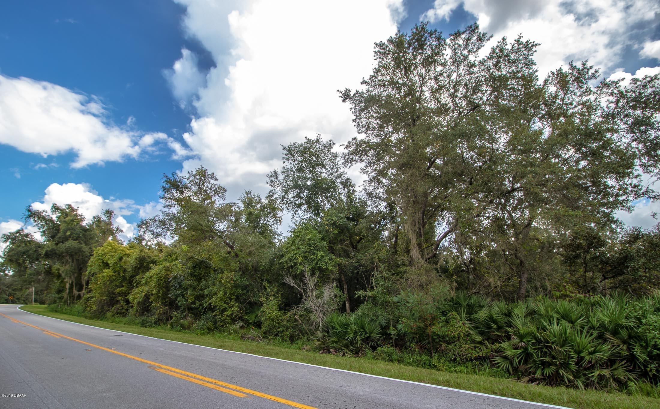 0 Reynolds Road DeLeon Springs, FL 32130