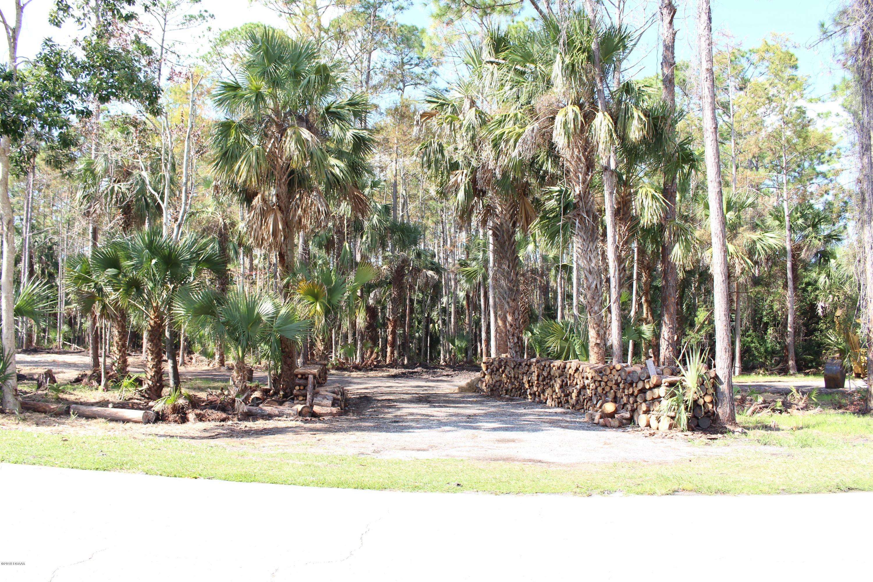 3 Remington Road, Ormond Beach in Flagler County, FL 32174 Home for Sale