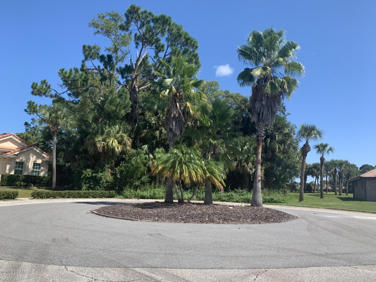 105 Golden Plover Court, one of homes for sale in South Daytona