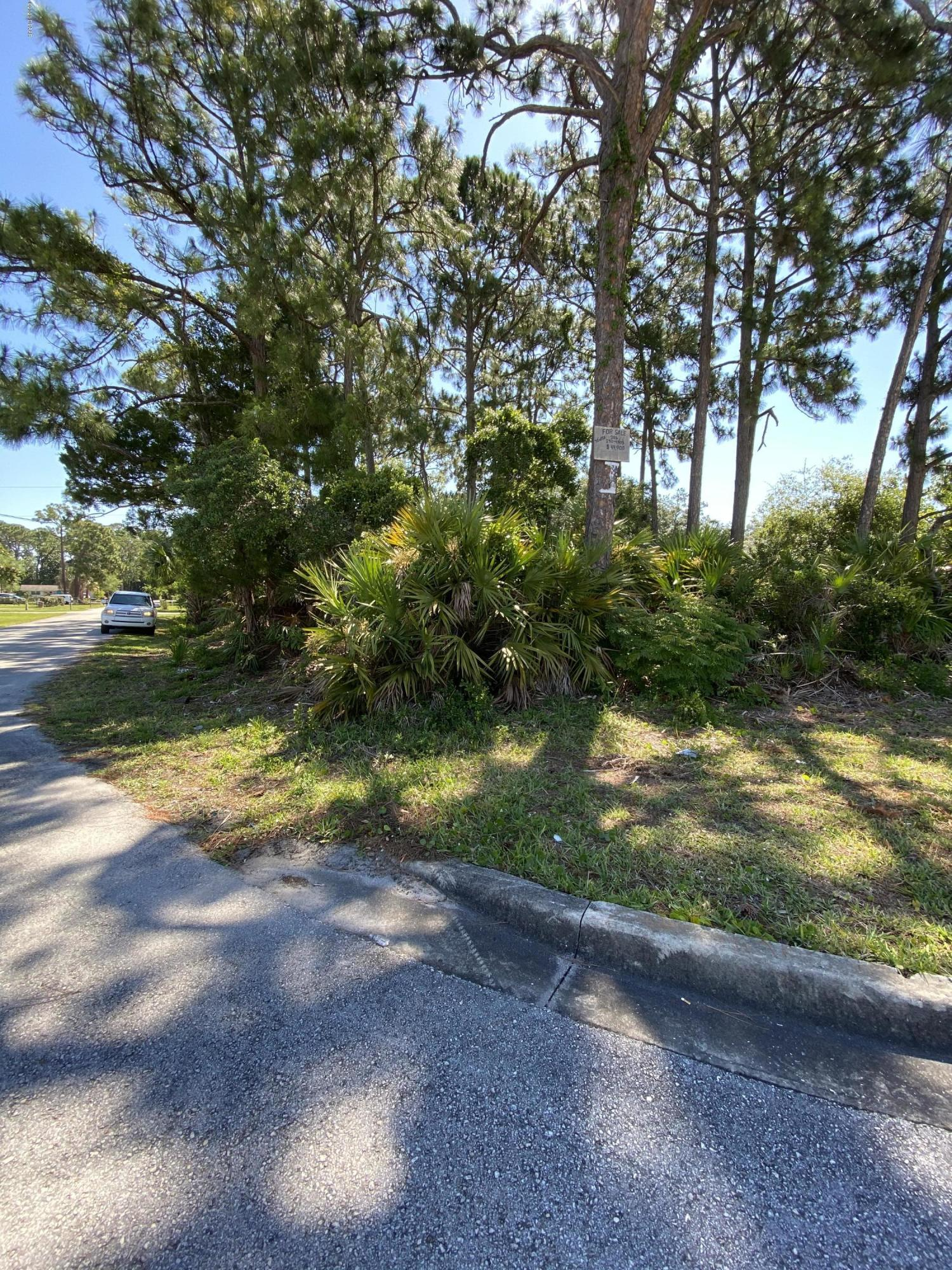 One of Ponce Inlet Homes for Sale at 0 S Nova Road
