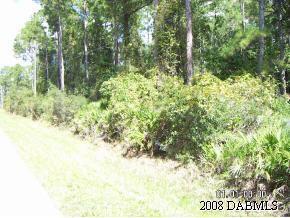 Real Estate for Sale, ListingId: 18952806, Ormond Beach,FL32174