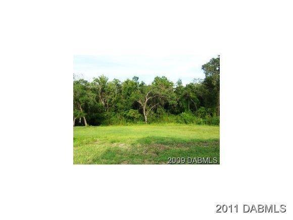 Real Estate for Sale, ListingId: 18953936, Pt Orange,FL32128