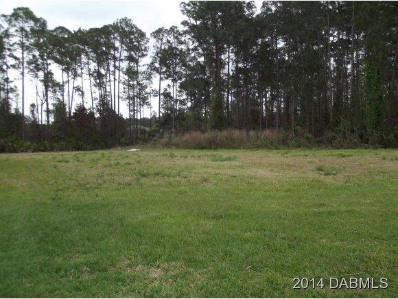 Real Estate for Sale, ListingId: 18953749, Pt Orange,FL32128