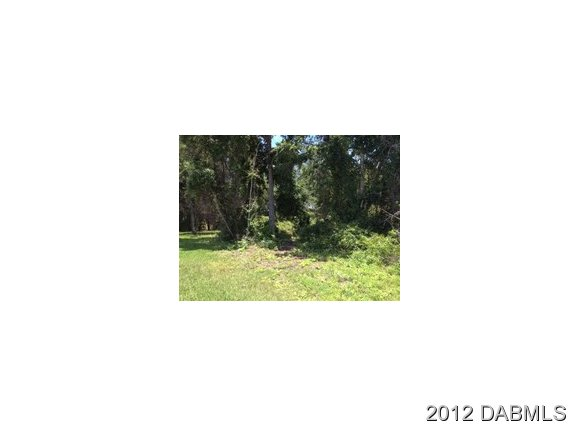 Land for Sale, ListingId:20865447, location: 19 Perthshire Ln Palm Coast 32164