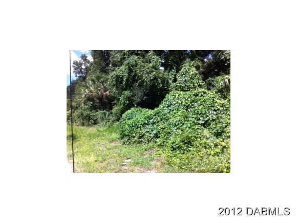 Land for Sale, ListingId:30621768, location: 510 Euclid Ave E Deland 32724