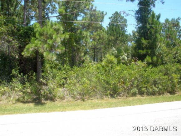 44 Wheeling Ln, Palm Coast, FL 32164