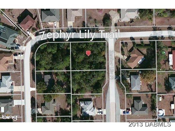 Real Estate for Sale, ListingId: 22249234, Palm Coast,FL32164