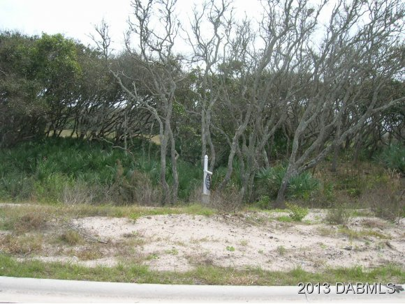 Real Estate for Sale, ListingId: 22325363, Ponce Inlet, FL  32127