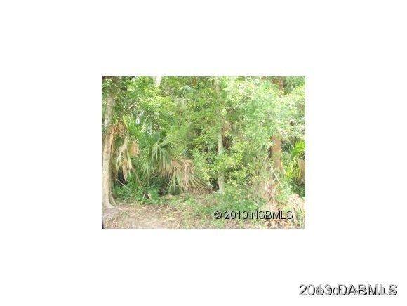 Real Estate for Sale, ListingId: 22852995, New Smyrna Beach,FL32168