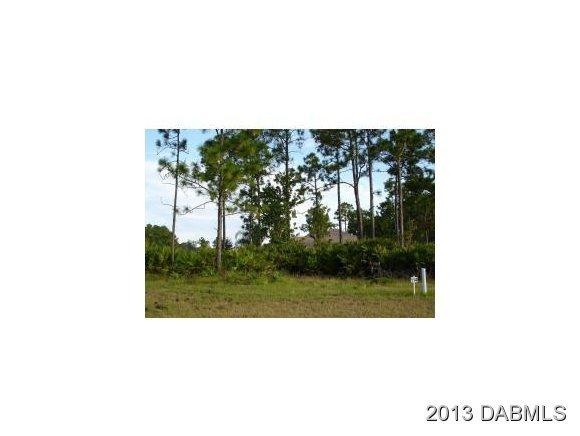 Image of Acreage for Sale near Bunnell, Florida, in Flagler county: 5.00 acres