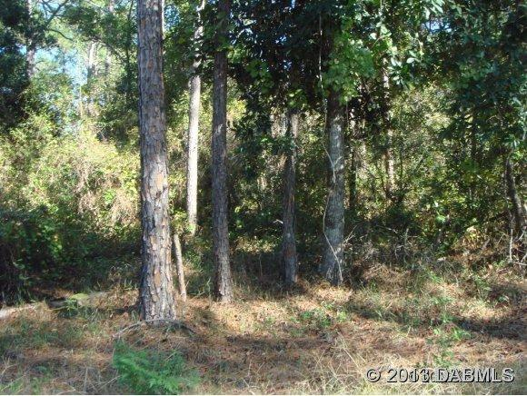 Land for Sale, ListingId:25168123, location: Deland 32724