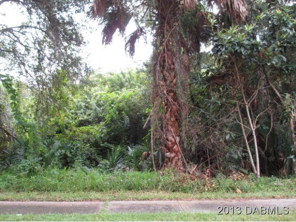 Land for Sale, ListingId:25558665, location: 141 Central Ave Ormond Beach 32174