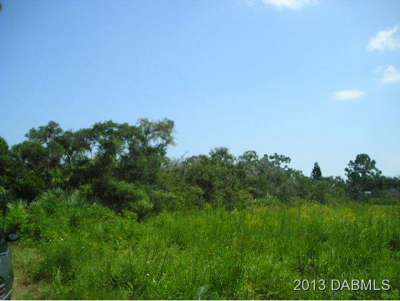 Real Estate for Sale, ListingId: 26002325, Edgewater,FL32141