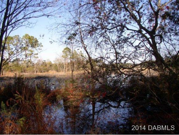 471 Forest Creek Run, De Leon Springs, FL 32130