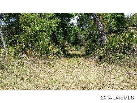 Real Estate for Sale, ListingId: 27459194, Pt Orange,FL32127