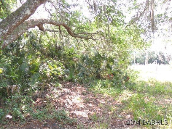 Real Estate for Sale, ListingId: 27851418, New Smyrna Beach,FL32168