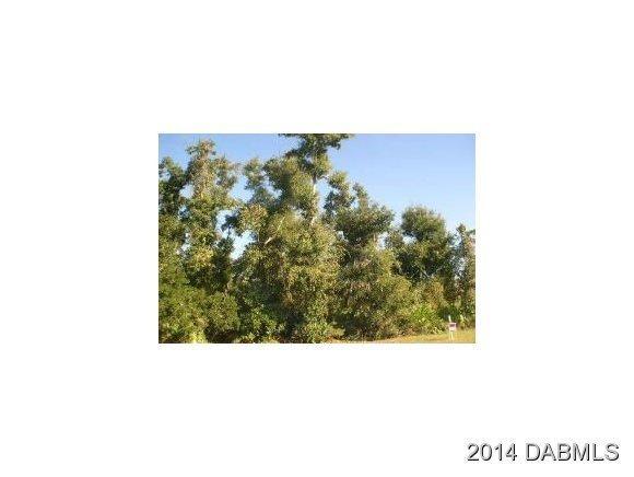 Real Estate for Sale, ListingId: 28074005, Pt Orange,FL32128