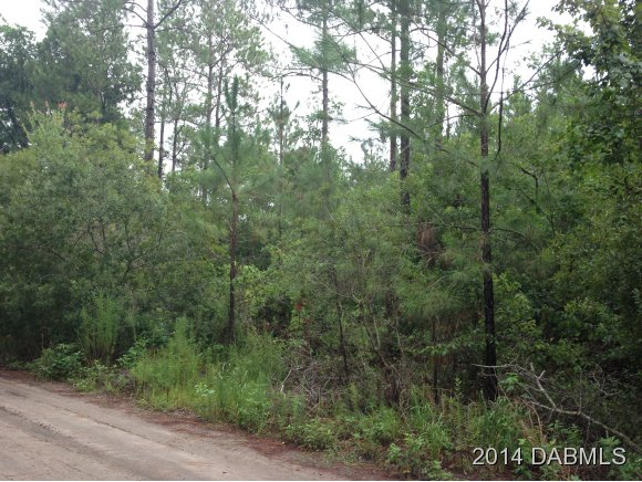 Land for Sale, ListingId:28119723, location: 124 Conifer Ln Ormond Beach 32174
